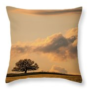 Lonely Silhouette Throw Pillow by Jeff Phillippi