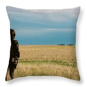 Look To The West Throw Pillow by Carl Young