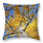 Look Up Throw Pillow by Rick Furmanek