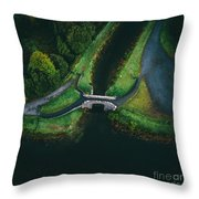 Looking Down At You Throw Pillow