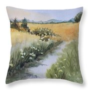 Looking Towards Canadian  Cascades Throw Pillow