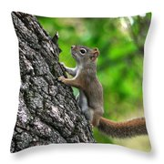 Lost Nuts Throw Pillow
