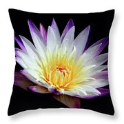 Lovely Lily In Water Throw Pillow