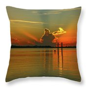Low Flying Pelican Sunrise Throw Pillow