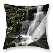 Lumsdale Falls 10.0  Throw Pillow