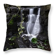 Lumsdale Falls 12.0 Throw Pillow