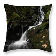 Lumsdale Falls 9.0 Throw Pillow