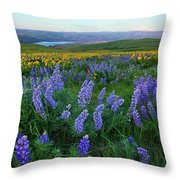 Lupines At Sunrise Throw Pillow
