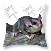 M Is For Mahogany Glider Throw Pillow