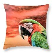Macaw Parrot Throw Pillow