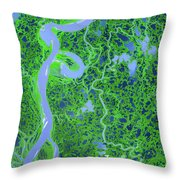 Mackenzie River Delta In Canada Throw Pillow