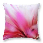 Macro Photo Of A Beautiful Flower. Chrysanthemum. Throw Pillow