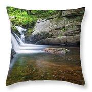 Mad River Falls Throw Pillow by Nathan Bush