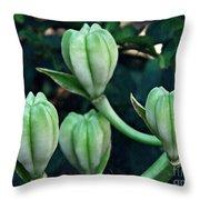 Madonna Lilies Throw Pillow
