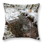 Maisie At The Pond - Winter Throw Pillow by Belinda Greb