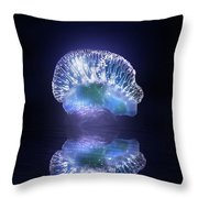 Man O' War Throw Pillow