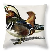 Mandarin Duck  Aix Galericulata Illustrated By Charles Dessalines D' Orbigny  1806-1876 1 Throw Pillow