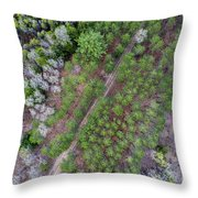 Manistee River Aerial Throw Pillow