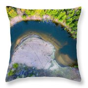 Manistee River Curve Aerial Throw Pillow