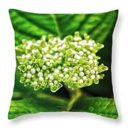 Many Buds Throw Pillow