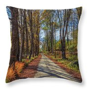 Maple Lane Old Fairgrounds Road Nh Throw Pillow