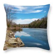 March Morning At Sanctuary Pond Throw Pillow