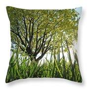 Marine Park Spring Sunshine Throw Pillow