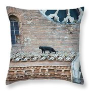 Mary's Cat Throw Pillow