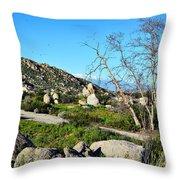 Maze Stone Road Throw Pillow