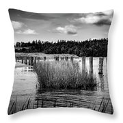 Mccormack's Beach Provincial Park, Black And White Throw Pillow