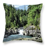 Mcdonald Creek 1 Throw Pillow