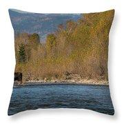 ME8 Throw Pillow by Joshua Able's Wildlife
