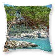Mediterranean Landscape In Menorca Throw Pillow