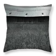 Metal Roof Throw Pillow by Bob Orsillo