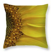 Metamorphosis-3 Throw Pillow