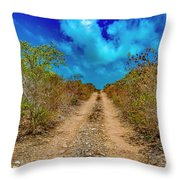 Middle Caicos Rocky Road Throw Pillow