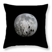 Midnight Moonshiners  Throw Pillow