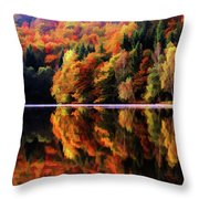 Mirrored Gallery Throw Pillow