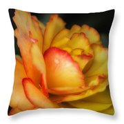 Missing You  7571 Throw Pillow