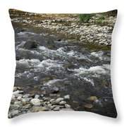 mission Creek Greenway, Throw Pillow