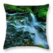Misty Falls - 2976 Throw Pillow