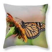 Monarch 2018-28 Throw Pillow