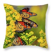 Monarch Gathering 2 Throw Pillow
