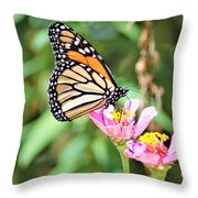 Monarch's Stance... Throw Pillow