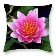 Monet Water Lilly Throw Pillow