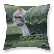 Monkey Forest Throw Pillow