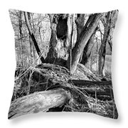 Monochrome Woods 2 Throw Pillow