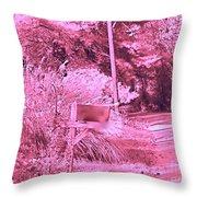 Monochromerose Countyroad Throw Pillow