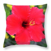 Montecito Perfection Throw Pillow