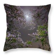Moonlight And Magic Throw Pillow